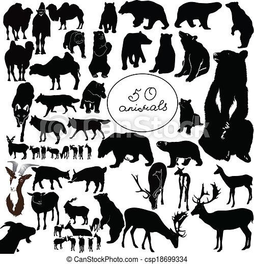 animals - csp18699334