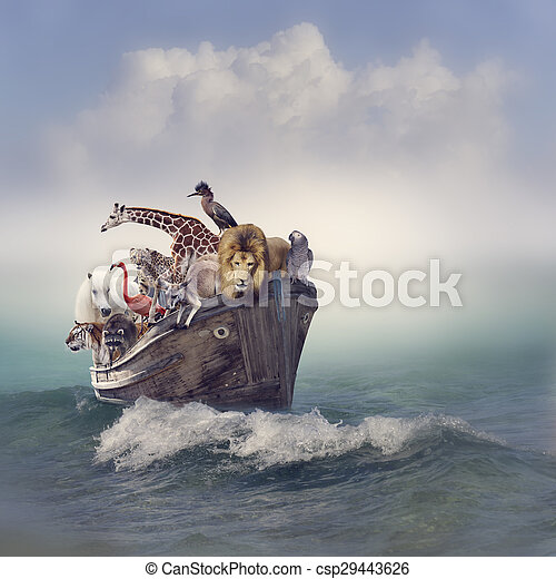Animals in a Boat - csp29443626