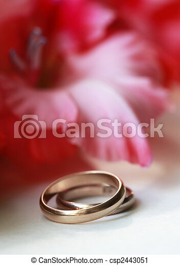 anneau mariage fleur plot simple deux hybridus photographie de stock rechercher. Black Bedroom Furniture Sets. Home Design Ideas