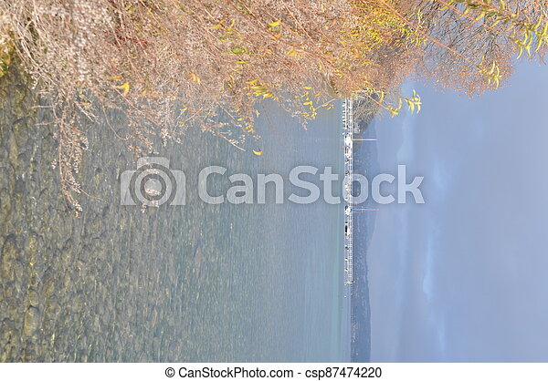Annecy lake and autumn leaves - csp87474220