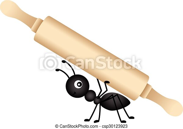 Ant carrying a rolling pin - csp30123923