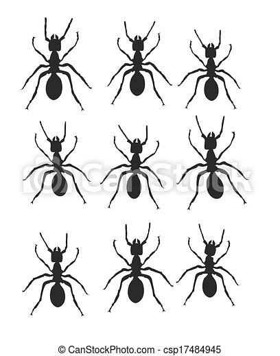 ant trail stock illustration
