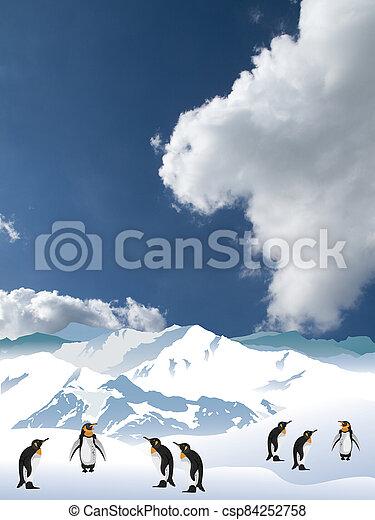 Antarctic penguins - csp84252758