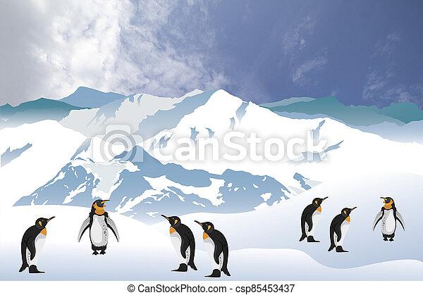 Antarctic penguins - csp85453437