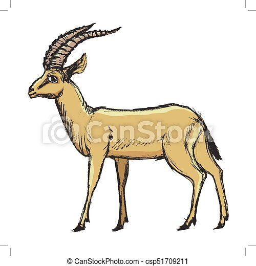 antelope african animal vector coloured sketch hand vector rh canstockphoto com antelope horn clipart antelope horn clipart