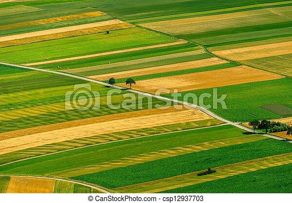 antenne, felter, grønne, udsigter, høst, foran - csp12937703