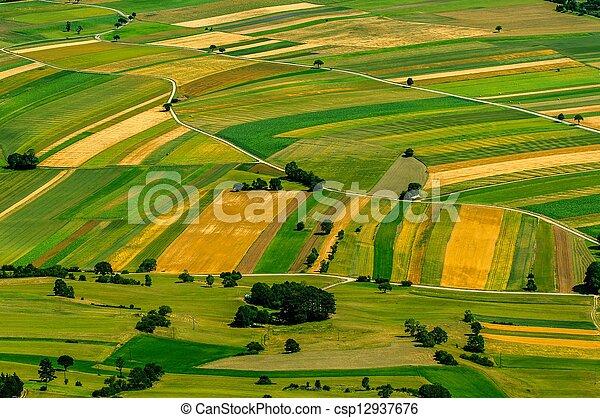 antenne, felter, grønne, udsigter, høst, foran - csp12937676
