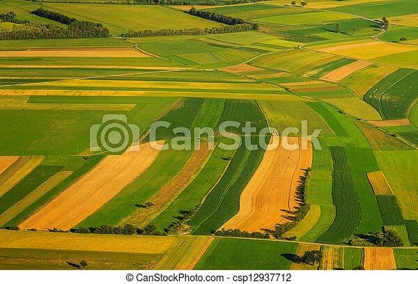 antenne, felter, grønne, udsigter, høst, foran - csp12937712