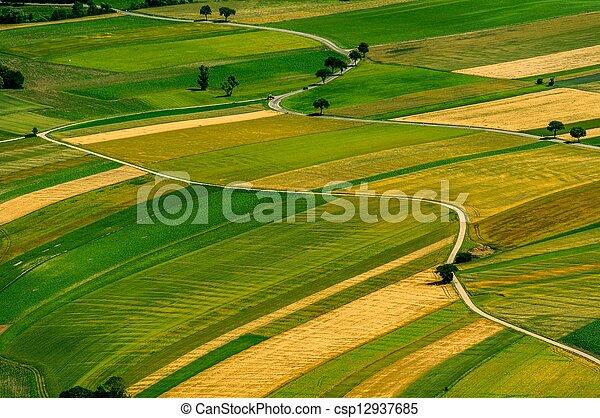 antenne, felter, grønne, udsigter, høst, foran - csp12937685