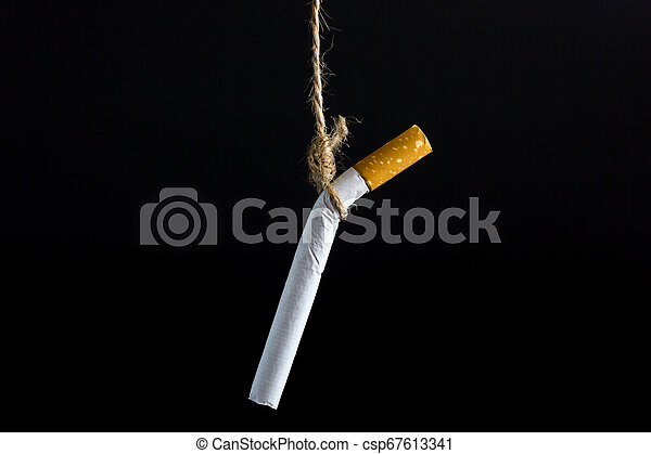 Anti Tobacco, Cigarette was hanged with a rope on dark background. - csp67613341