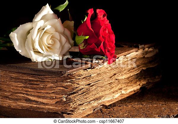 antikvitet, blomningen, bok - csp11667407