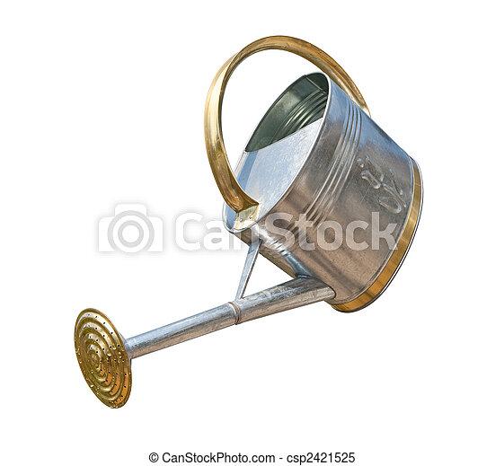 antikvitet, vattning kunna - csp2421525