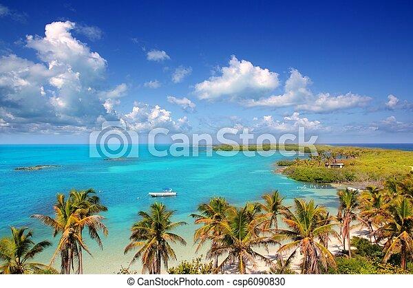 antilles, mexique, île, exotique, contoy, vue aérienne - csp6090830