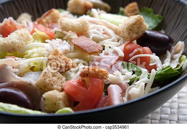 Antipasto Chefs Salad - csp3534961