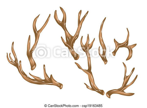 antlers - csp19163485