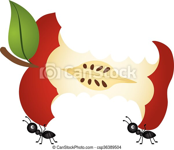 scalable vectorial image representing a ants carrying apple rh canstockphoto com Apple Seed Clip Art apple core clipart free
