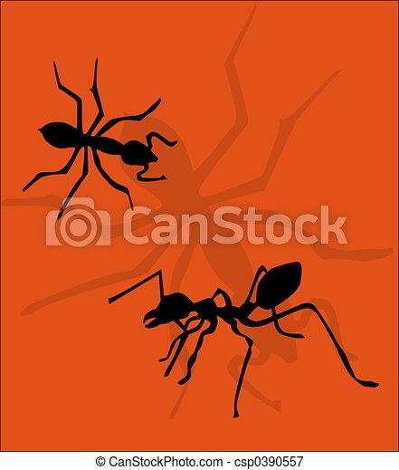 Ants - csp0390557