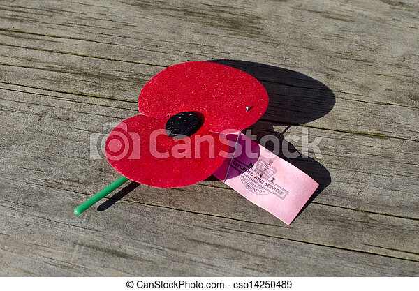 ANZAC red poppie  - csp14250489