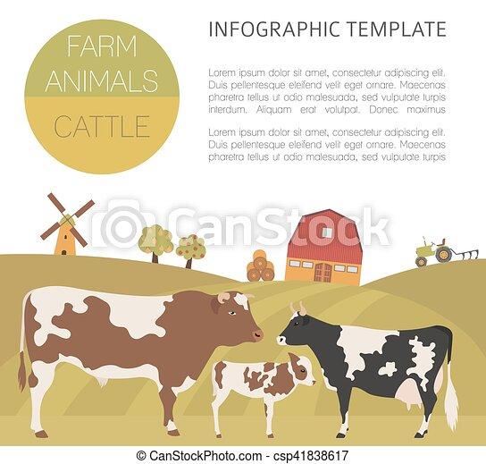 Appartamento Mucca Family Toro Infographic Disegno Bestiame