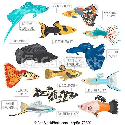 Appartamento stile set animali domestici icona fish for Creare pesci