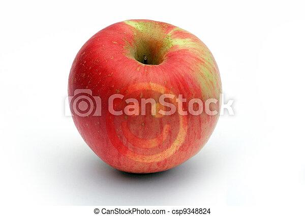 Apple 2 - csp9348824