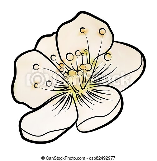 Apple blossom. Contour pattern - csp82492977