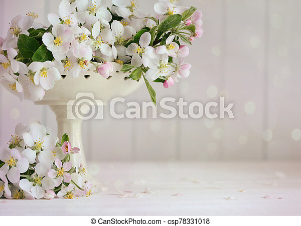 Apple blossoms in vase with soft pink background - csp78331018