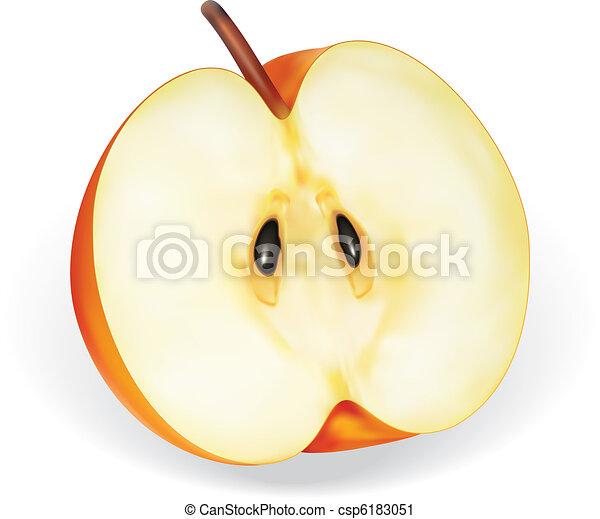 Apple Half - csp6183051