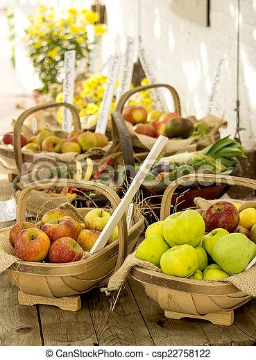 Apple harvest - csp22758122