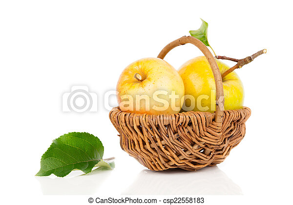 apple in a basket on white background - csp22558183