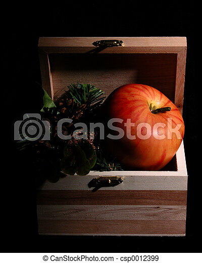 Apple in a Box - csp0012399