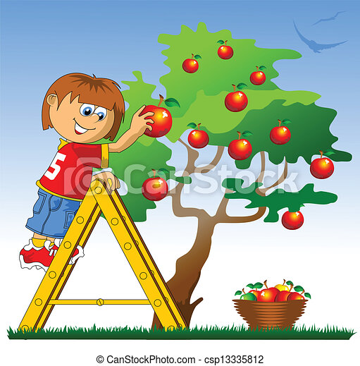 apple picking little boy collects red apples vector illustration rh canstockphoto com apple picking basket clipart Clip Art of Apple's
