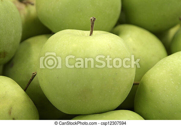 apple - csp12307594