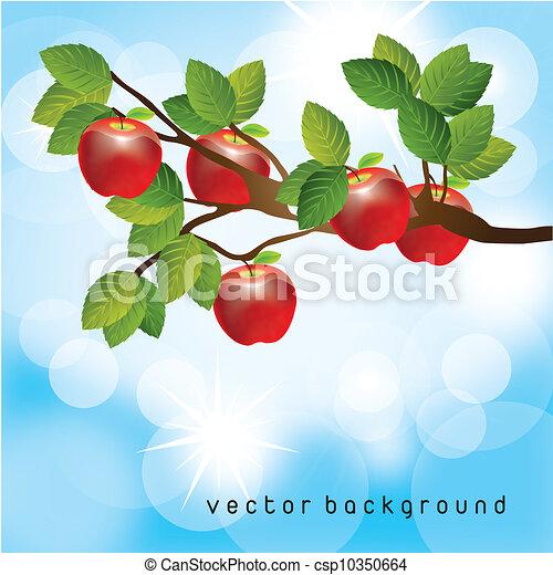 apple tree - csp10350664