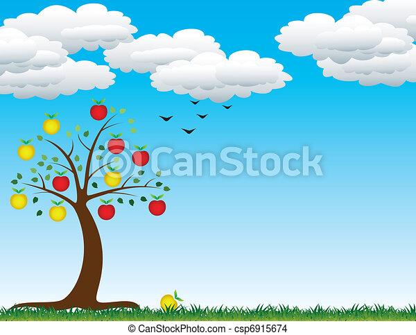 apple tree - csp6915674