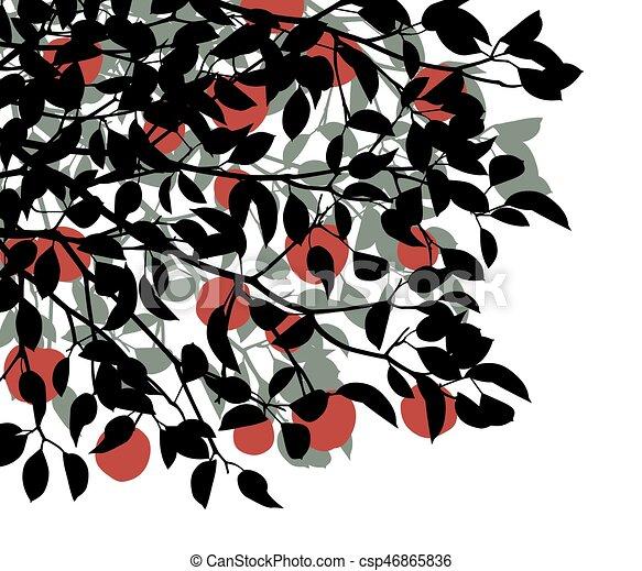 Apple tree - csp46865836