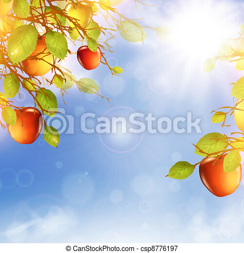 apple tree - csp8776197