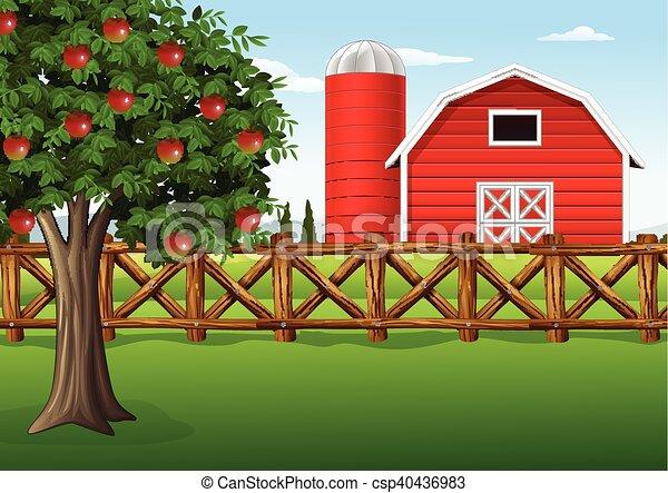 Apple tree on the farm - csp40436983
