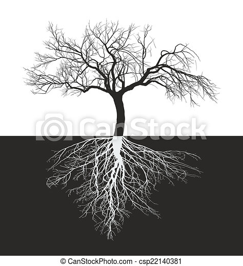 Apple tree without leaves with root - csp22140381