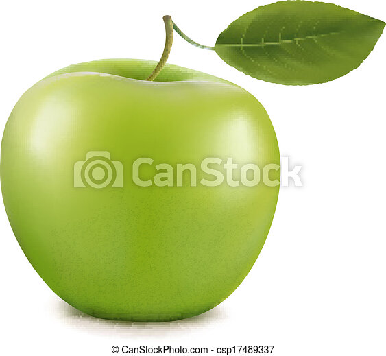 apple., vecteur, vert - csp17489337