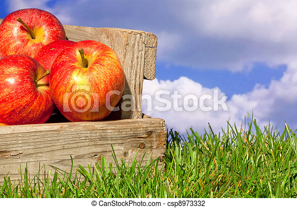 Apples in a crate on grass with blue cloudy sky - csp8973332