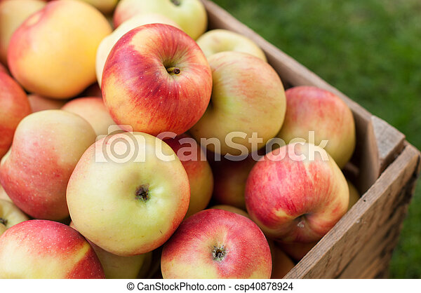 Apples in a crate - csp40878924