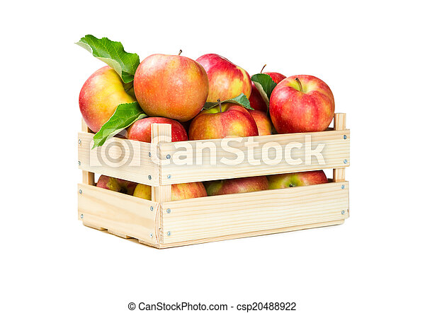 Apples in a wooden box - csp20488922