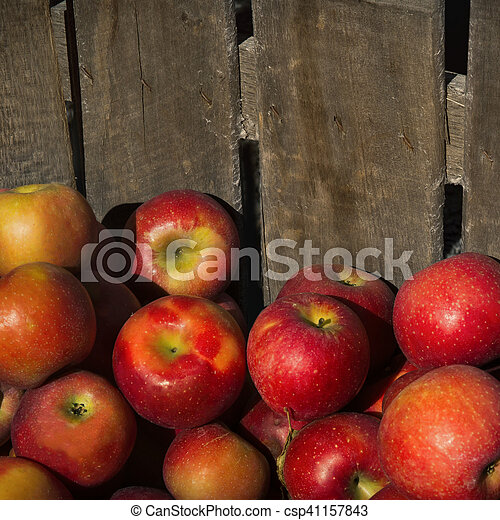 Apples in a wooden crate - csp41157843