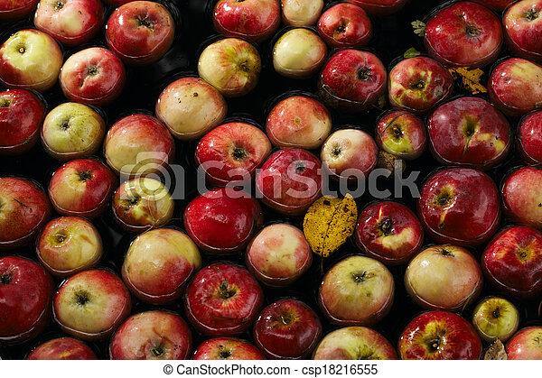 Apples in water - csp18216555