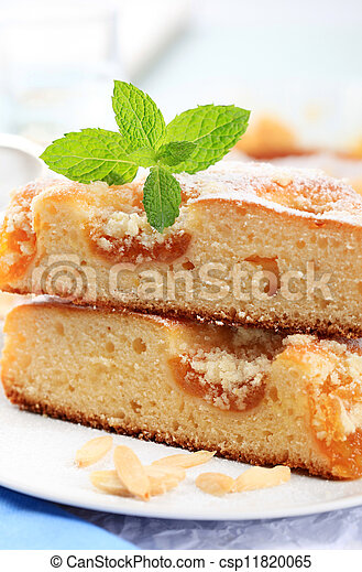 Apricot cake - csp11820065