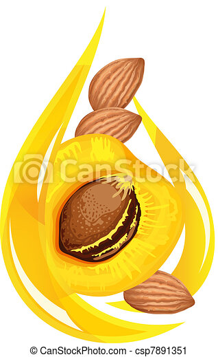 Apricot kernel oil. Stylized drop. - csp7891351
