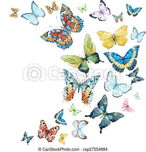 aquarela, borboletas - csp27554884