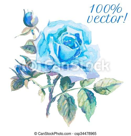Aquarelle Bleu Dessin Rose Bleu Rose Illustration Aquarelle