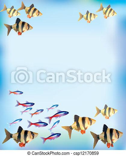 Aquarium background - csp12170859